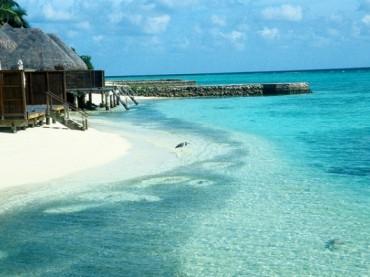 Malediven: Putztrupp statt Cocktail