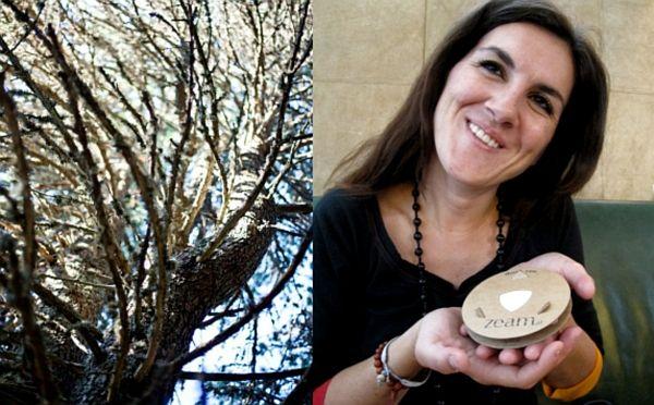Meine ZEAM und ich: Wie man mit einem Baum verreist
