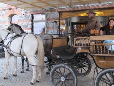 Mit Kutsche durch die Hohe Tatra: Meine 20 Minuten Ruhm