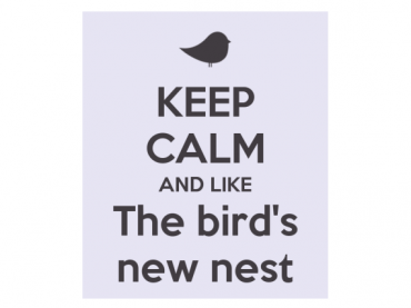 Keep calm and like The bird's new nest