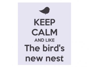 Keep calm and like The bird's new nest
