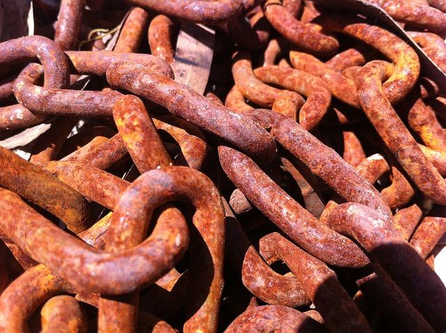 Eisen – Warum Spinat ein schlechter Eisenlieferant und Eisenmangel kein Vegetarierproblem ist