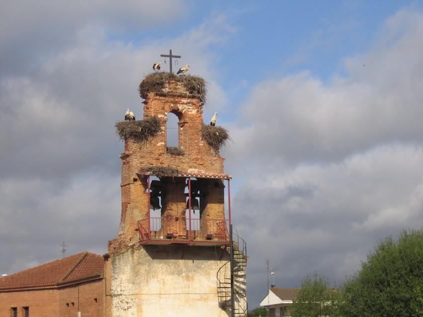 Auf dem Jakobsweg: Von St. Jean Pied de Port bis Santiago de Compostella