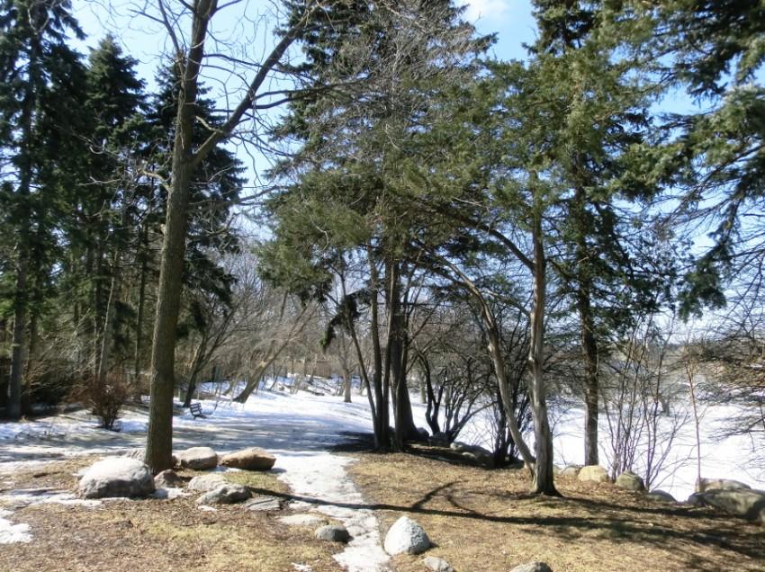 Grün im großen weißen Norden: Anhaltende Kälte und Erfahrung mit Meetup