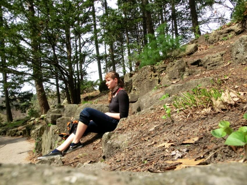 Grün im großen weißen Norden – Fauna und Flora