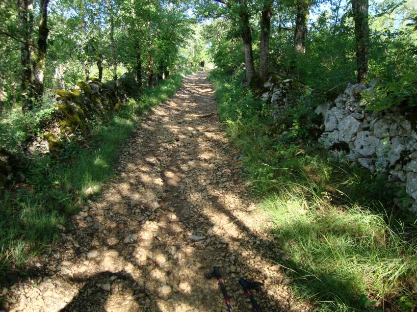 Wieder auf dem Jakobsweg: Tag 28, Cahors