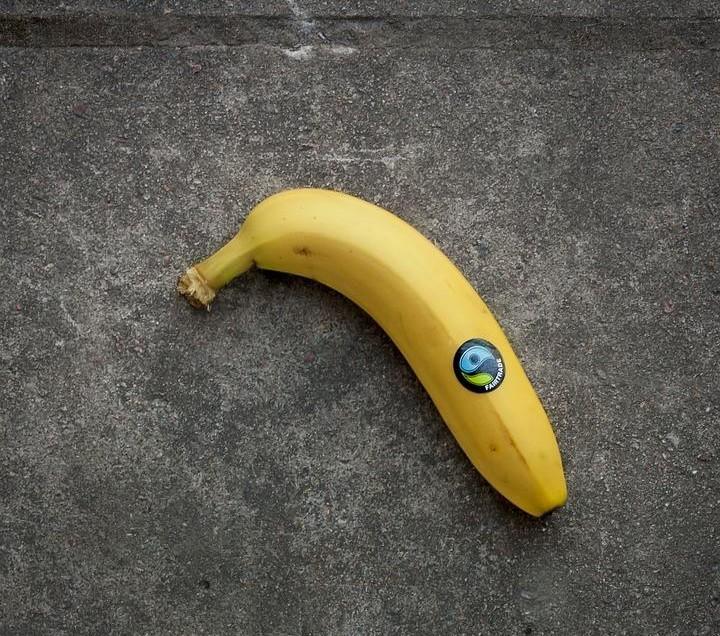 "Kritischer Konsum – das Qualitätssiegel ""Fairtrade"""