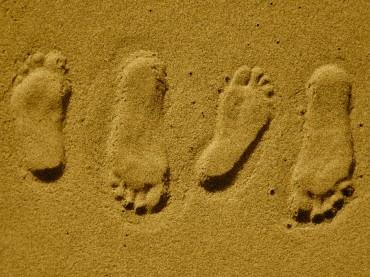 Der ökologische Fußabdruck – Definition, Berechnung, Ziel