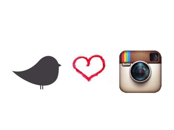 The bird's new nest jetzt auch auf Instagram