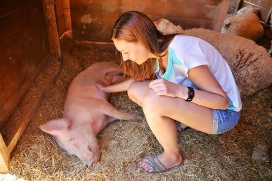 Empathie – Die Basis des Zusammenlebens von Mensch und Tier