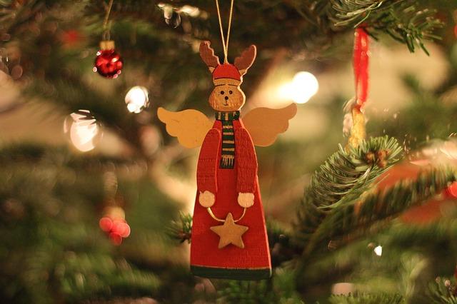 lebender weihnachtsbaum mit liefer und abholservice the bird 39 s new nest. Black Bedroom Furniture Sets. Home Design Ideas