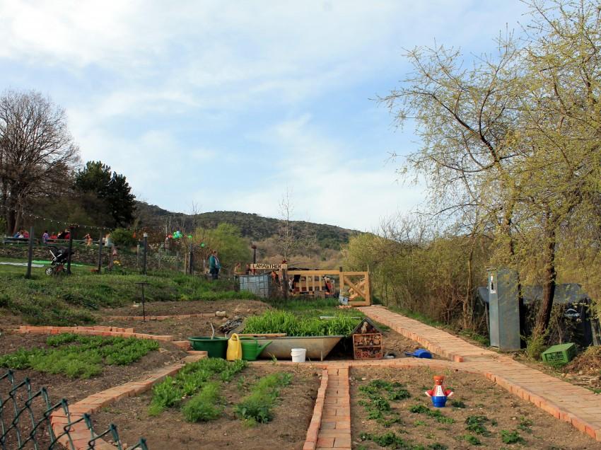 Lamasthék: Vegane Jausenstation mit Lamas