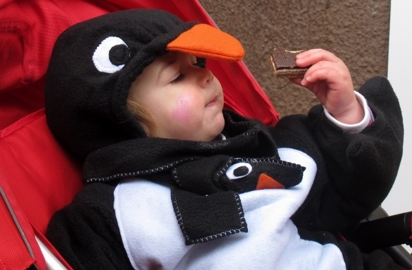 Kind, Schoko, Pinguin - ein Erfolgsrezept. Foto: Doris