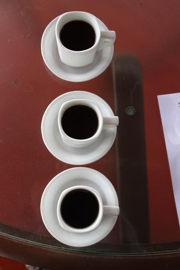 Rich zeigt auf seiner Plantage, wie Kaffee hergestellt wird. Foto: Roxy