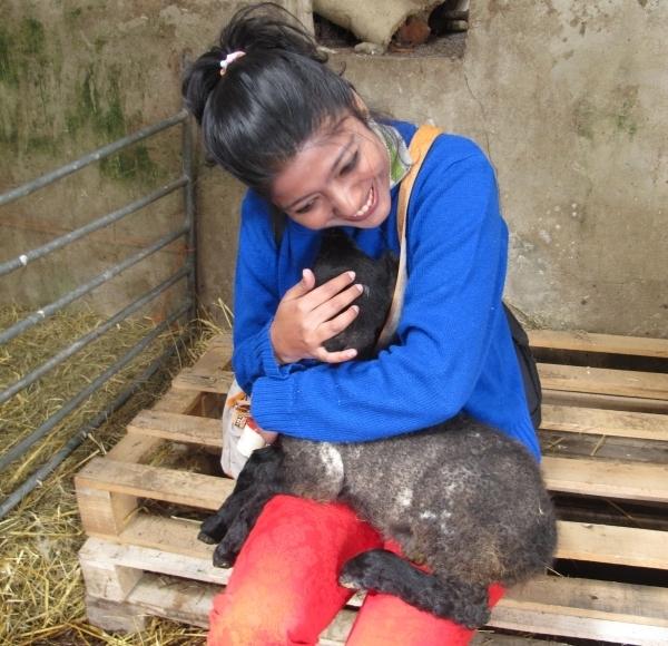 So macht man eine indische Reisebloggerin glücklich - mit Lamm im Schoß. Foto: Doris