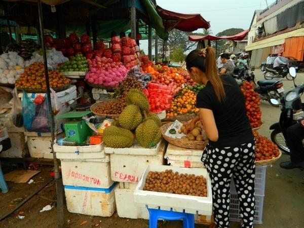 Verteile Obst. Foto: Carina