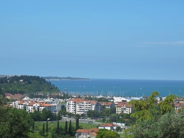 Der Blick an die slowenische Küste - der Olivenhain liegt malerisch über der Stadt Izola. Foto: Doris