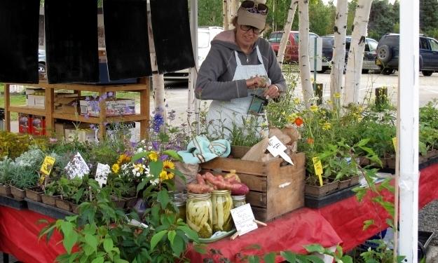 Schöner, bunter Markt. Foto: Doris