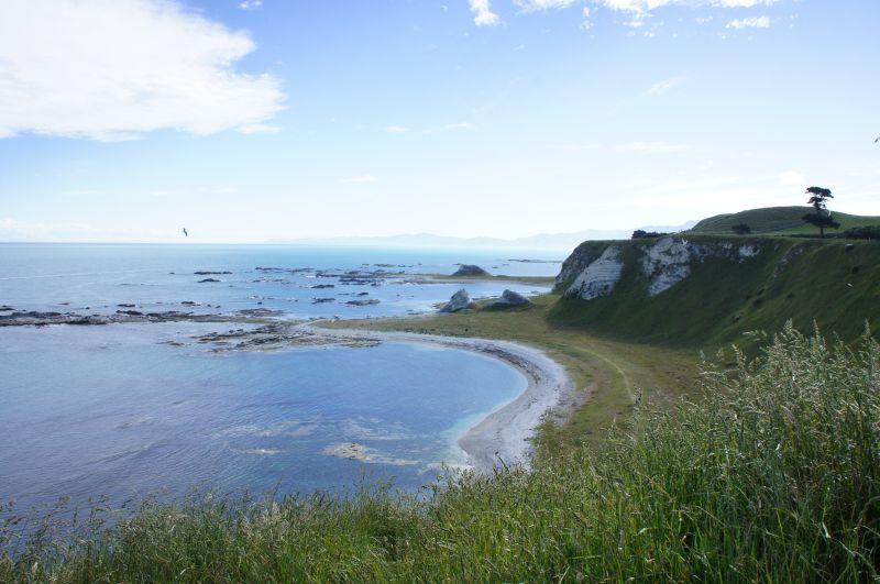 Per Anhalter durch Neuseeland - Tanja hat es gemacht. Foto: Tanja
