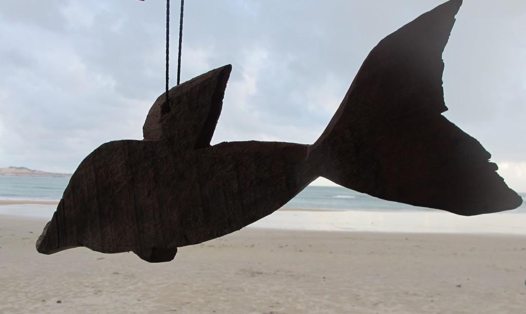 Das ist und bleibt der einzige Delphin, den ich hier sehen werde. Foto: Doris
